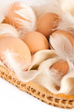 Eggs and feathers Stock Photo