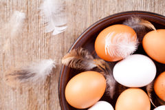 Eggs and feathers Royalty Free Stock Image