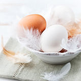 Eggs and Feathers in a Bowl. Eggs and feathers in a small bowl; easter arrangement Stock Image