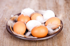 Eggs and feathers in a plate Royalty Free Stock Photography