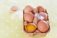Eggs and feathers on spotted cloth Royalty Free Stock Image