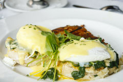 Eggs Florentine Benedict on White Plate Royalty Free Stock Image