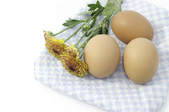 Eggs and flower on dish mat. Eggs and mum yellow flower on blue plaid dish mat Royalty Free Stock Photo
