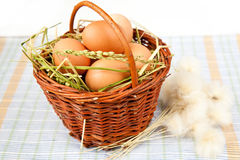 Eggs and flowers Royalty Free Stock Photo