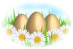 Eggs & flowers Stock Photos