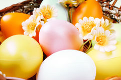 Eggs and flowers in the basket Stock Photography