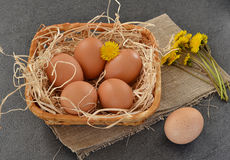 Eggs and flowers in a basket on grey background. Eggs in a basket on grey background with yellow flowers royalty free stock photo