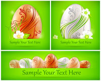 Eggs with flowers on green & text Stock Images