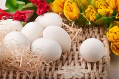 Eggs and flowers lying on straw tray Stock Photos