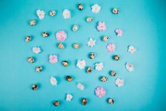 Eggs and flowers pattern. royalty free stock photo