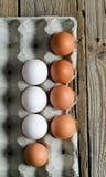 Eggs in formwork Stock Photos