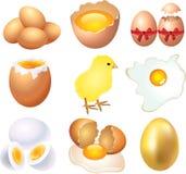 Eggs Foto-realistischen Satz Lizenzfreie Stockfotografie