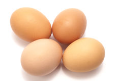 Eggs. Four brown eggs on a white background royalty free stock photos