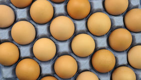 Eggs. Free range brown eggs on a recycled paper moulded or molded pulp cardboard egg tray packaging with individual compartments for single eggs Royalty Free Stock Image