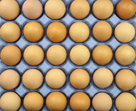 Eggs. Free range brown eggs on a recycled paper moulded or molded pulp cardboard egg tray packaging with individual compartments for single eggs Royalty Free Stock Images