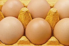 Eggs. Free range chicken eggs closeup Royalty Free Stock Image