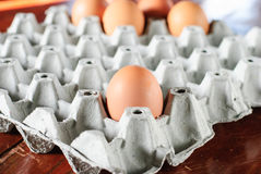 Eggs. Fresh eggs in container can be used as a background Stock Images