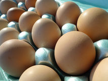 Eggs, fresh from the farm, brown eggs in carton. Farm fresh eggs in a blue green carton, light and dark brown fresh eggs in various sizes. Chicken eggs Stock Photos