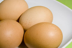 Eggs on fresh green background. (on the white plate Royalty Free Stock Image