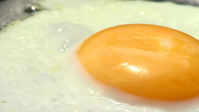 Eggs fried in a pan Stock Images