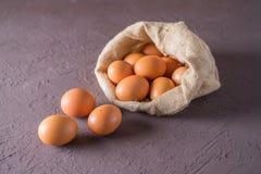 Eggs a galinha em um saco da lona Fotos de Stock Royalty Free