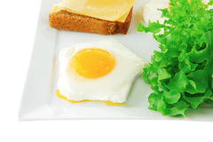 Eggs and gold cheese Stock Photography