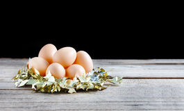 Eggs in gold nest Stock Photo