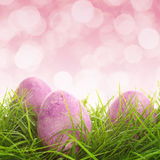Eggs on the grass Royalty Free Stock Photos