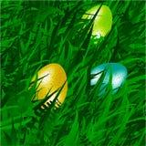 Eggs on grass background Stock Photos