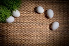 Eggs in the grass. Five eggs in the grass royalty free stock photos