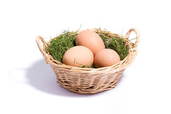 Eggs on the grass in the wicker basket. Three eggs on the grass in the wicker basket  on white close-up Stock Image