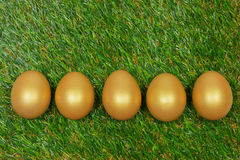 Eggs on a green artificial grass. With white flowers royalty free stock photos