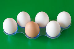 Eggs on green background Stock Photography