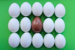 Eggs on green background. lots of white eggs and one chocolate. the view from the top royalty free stock images