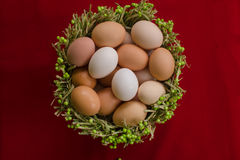 Eggs in the green basket close Royalty Free Stock Photos