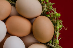 Eggs in the green basket close. Eggs in basket up close on a red background Royalty Free Stock Photos