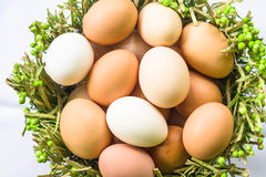 Eggs in the green basket close Stock Photos