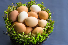 Eggs in the green basket Stock Images