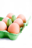 Eggs in a green carton. A carton of free range eggs isolated on white Royalty Free Stock Photography