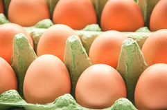 Eggs in green cartone. Some eggs in green cartone close up royalty free stock image