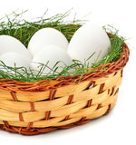 Eggs with green grass in the basket Royalty Free Stock Images