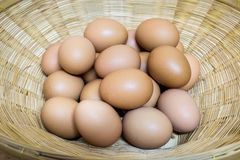 Eggs group in basket Stock Image