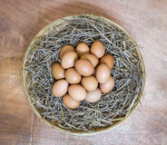 Eggs group Royalty Free Stock Photos