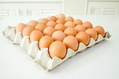 Eggs. Group of eggs in tray packaging put on the white table Stock Image