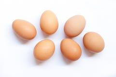 Eggs. Half dozen fresh eggs on a white background Stock Photos