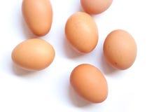 Eggs. Half dozen fresh eggs on a white background Royalty Free Stock Photo