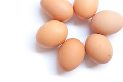 Eggs. Half dozen fresh eggs on a white background Stock Photography