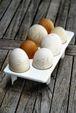 Eggs with hand written dates Royalty Free Stock Photography