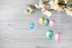 Eggs hanging on a branch Stock Photo