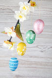 Eggs hanging on a branch Stock Photos